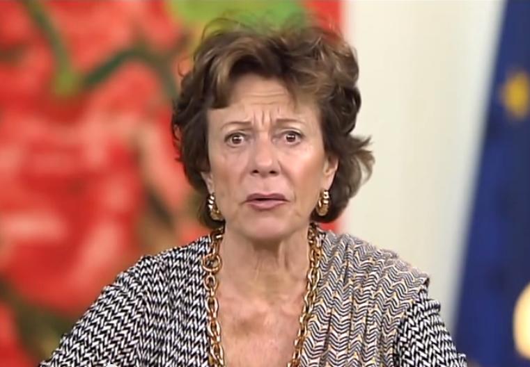 Neelie Kroes video shot