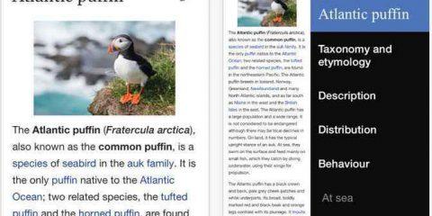 @App4Italy. La recensione del giorno: Wikipedia App