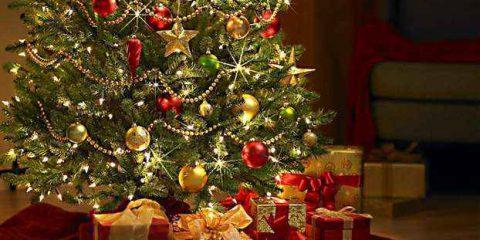 #Storie. Quattro settimane a Natale: I capitolo – L'albero