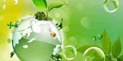 Biogas: dal Friuli un esempio vincente del Made in Italy