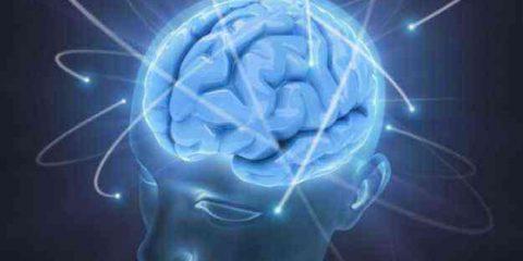 Digital Crime. Il diritto penale e le neuroscienze: rivoluzione o sfida?
