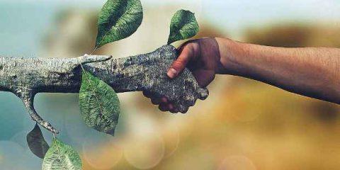 Ue lancia nuova consultazione per promuovere la finanza green