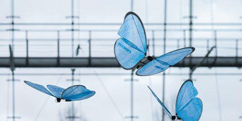 I droni farfalla prendono il volo (video)
