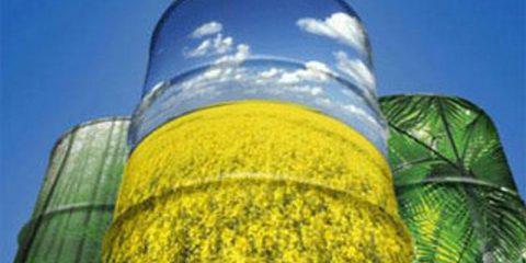 Biometano: via libera alla produzione in Italia. Domani seminario a Bologna