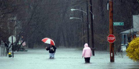 Cambiamenti climatici: la guida del MIT per salvare le città americane