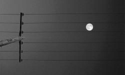 la luna e il pentagramma