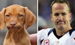 Indovina chi è: Uno dei due è il campione di football Peyton Manning...