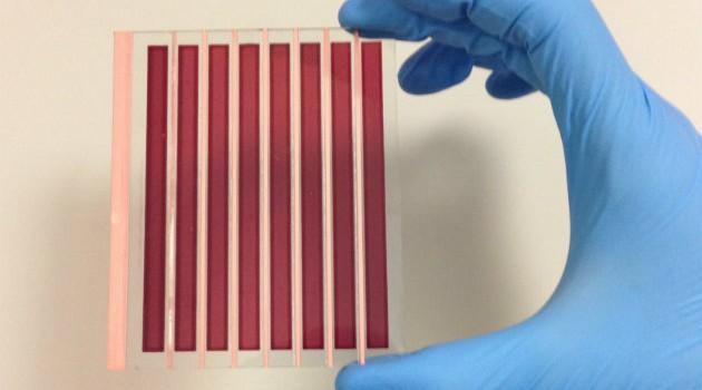 Pannello fotovoltaico al grafene