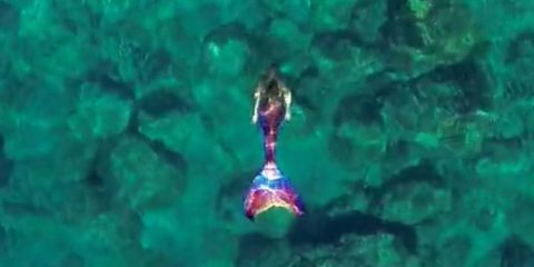 Video droni. Quando il drone incontra una sirena…ecco cosa succede