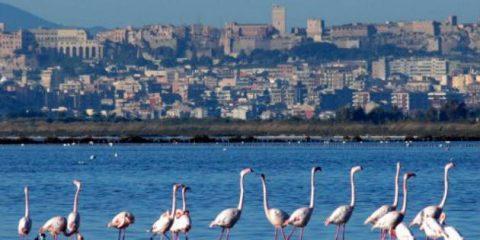 Green economy, Sardegna regione a emissioni zero nel 2050