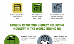 sustainability-in-the-fashion-industry-infographic