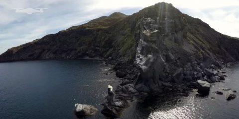 Video droni. Tra delfini, leoni marini, uccelli e balene: l'isola di Coronado (California) vista dal drone