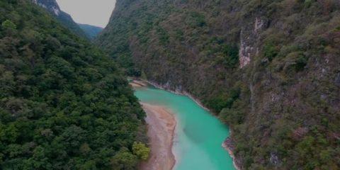 Video droni. Le acque turchesi del fiume Tampaòn (Messico), visto dal drone