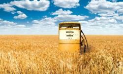 biocarburanti