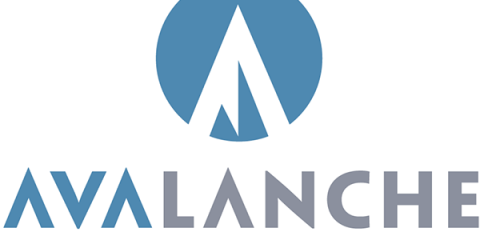 Avalanche Software riapre sotto l'ala di Warner Bros.