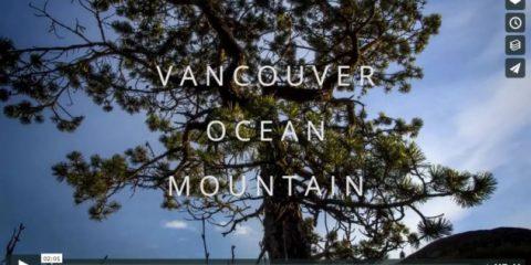 Videodroni. Ghiacciai, oceano e foreste, la Columbia britannica (Canada) vista dal drone