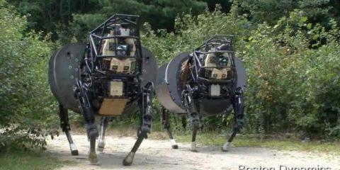 Robot che stupiscono (2^ puntata). BigDog, il 'mulo' dei marines: non cade mai (Video)