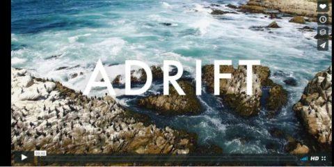 Videodroni. Monterey e le sue spiagge (California) viste dal drone
