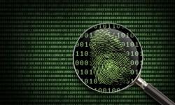 digitalcrime