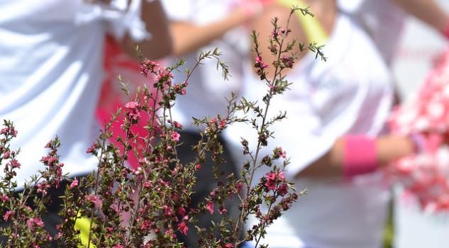 8-marzo-festa-della-donna-contro-il-tumore-al-seno1