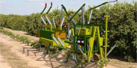 Gli effetti del muro di Trump, in arrivo robot al posto di agricoltori messicani
