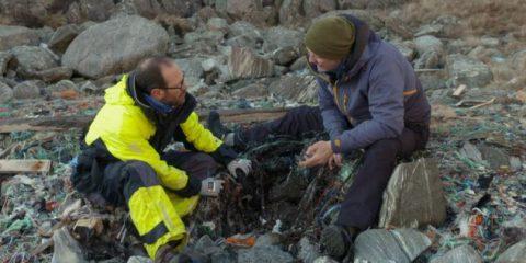 Sky lancia la campagna 'Sky Ocean Rescue – Un mare da salvare' contro l'inquinamento dei mari