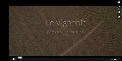 Videodroni. Le fantastiche vigne francesi viste dal drone