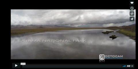Videodroni. Il Parco Nazionale Sajama (Cile) visto dal drone