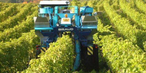 Innovazione e agricoltura, a Roma l'incontro 'Le tecnologie digitali nell'agroalimentare'
