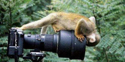 Uno degli scatti più laboriosi della storia della fotografia: obiettivo in faccia e scatto con l'alluce
