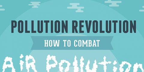 Come combattere l'inquinamento dell'aria
