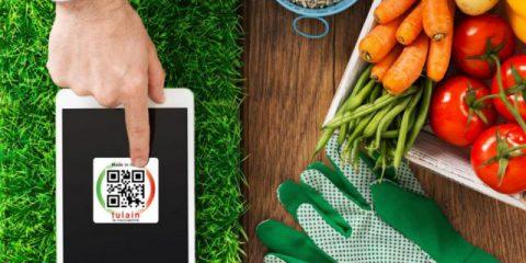 Green economy, nasce il modello italiano per l'agroalimentare digitale