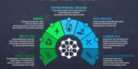 7 modi in cui la blockchain può aiutare l'ambiente