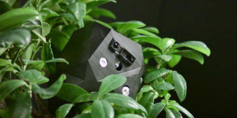 Flora robotica, un intreccio di piante e mattoni IoT per le case del futuro (video)