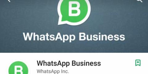 App4Italy. La recensione del giorno, WhatsApp Business
