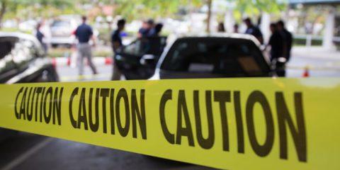 Sparatoria alla scuola Douglas High in Florida, Violenze in Colombia, Il presidente della Bundesbank contro il Bitcoin
