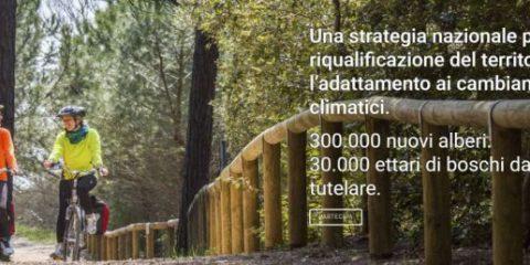 'Mosaico Verde', al via l'iniziativa promossa da AzzeroCO2 e Legambiente