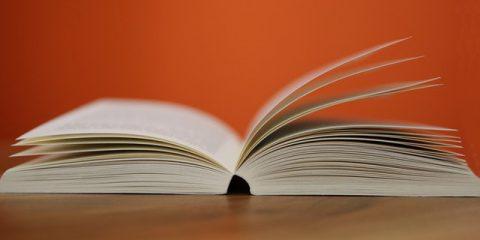 L'industria del libro, un disastro. Come la competizione dei media digitali sta schiacciando l'editoria