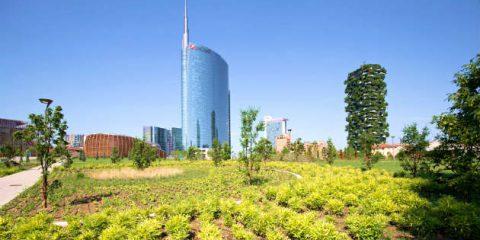 Milano pianterà 3 milioni di nuovi alberi in dieci anni e via il 20% di CO2 entro il 2020