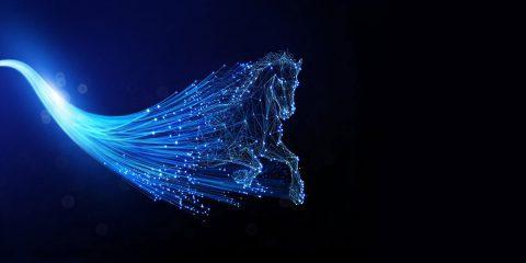 """Fastweb premiata """"Miglior operatore"""" per il servizio di connessione in fibra ottica Ftth"""
