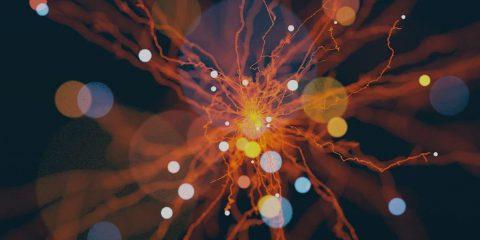 Intelligenza artificiale, la strategia nazionale parte dal CNR. Spesa globale a +44% nel 2019