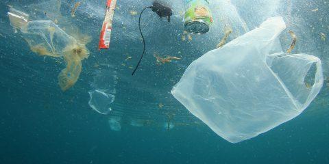 Plastica monouso, l'Ue conferma il divieto entro il 2021