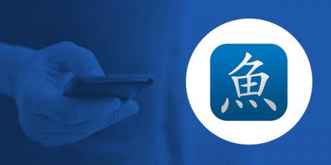 App4Italy. La recensione del giorno, Pleco Chinese Dictionary