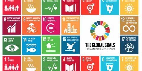 Agenda 2030, il Rapporto per l'Italia: solo il 38% delle imprese innova, diminuisce la CO2