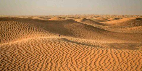 Dal Sahara energia solare per tutta l'Africa e l'Europa con l'agro-fotovoltaico