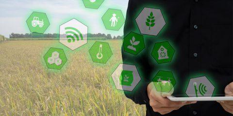 L'innovazione per la sostenibilità agroalimentare