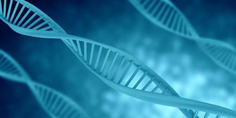 Come utilizzare i dati genetici, le prescrizioni del Garante Privacy