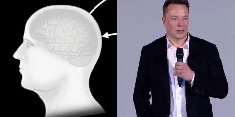 'Far controllare Pc e arti artificiali con la mente a persone paraplegiche'. La nuova sfida di Elon Musk