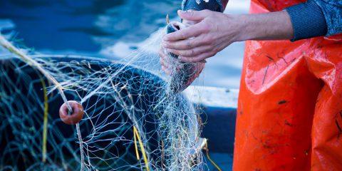 Regione Lazio, contributi per la pesca sostenibile