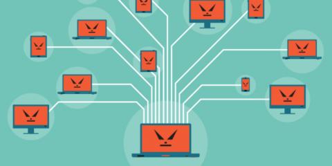 Cosa sono e come funzionano le Botnet